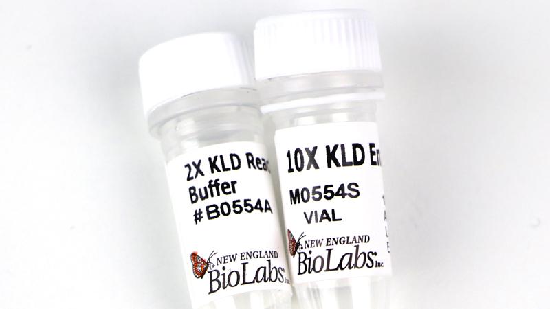 New England Biolabs (UK) Ltd - KLD Enzyme Mix