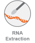 COVID_RNAExtraction_Category