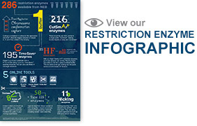 RestrictionEnzyme_infographic_website_0717_thumb