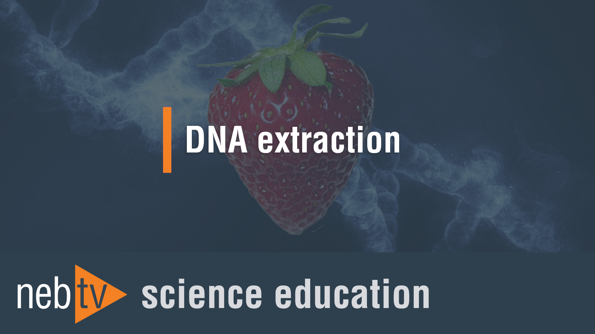 NEBTV_SciEdu_DNA-extraction_1920