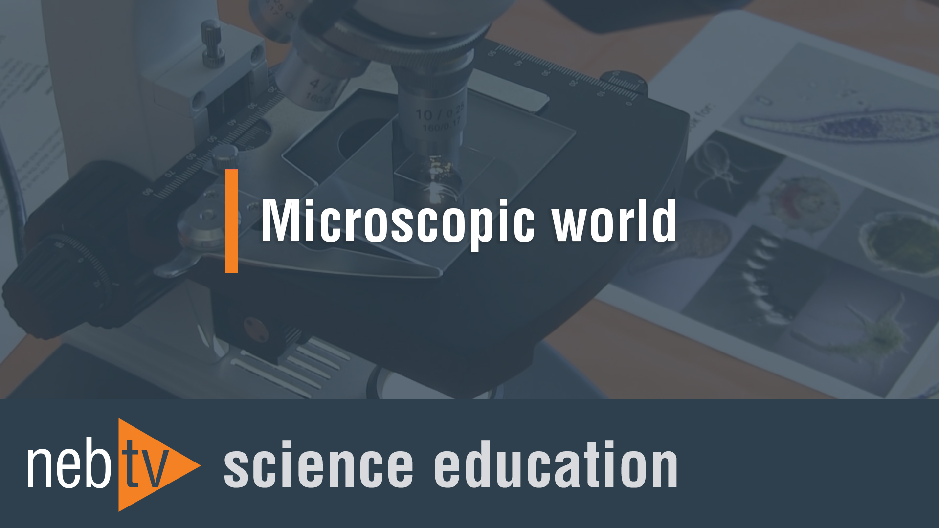 NEBTV_SciEdu_MicroscopicWorld_1920