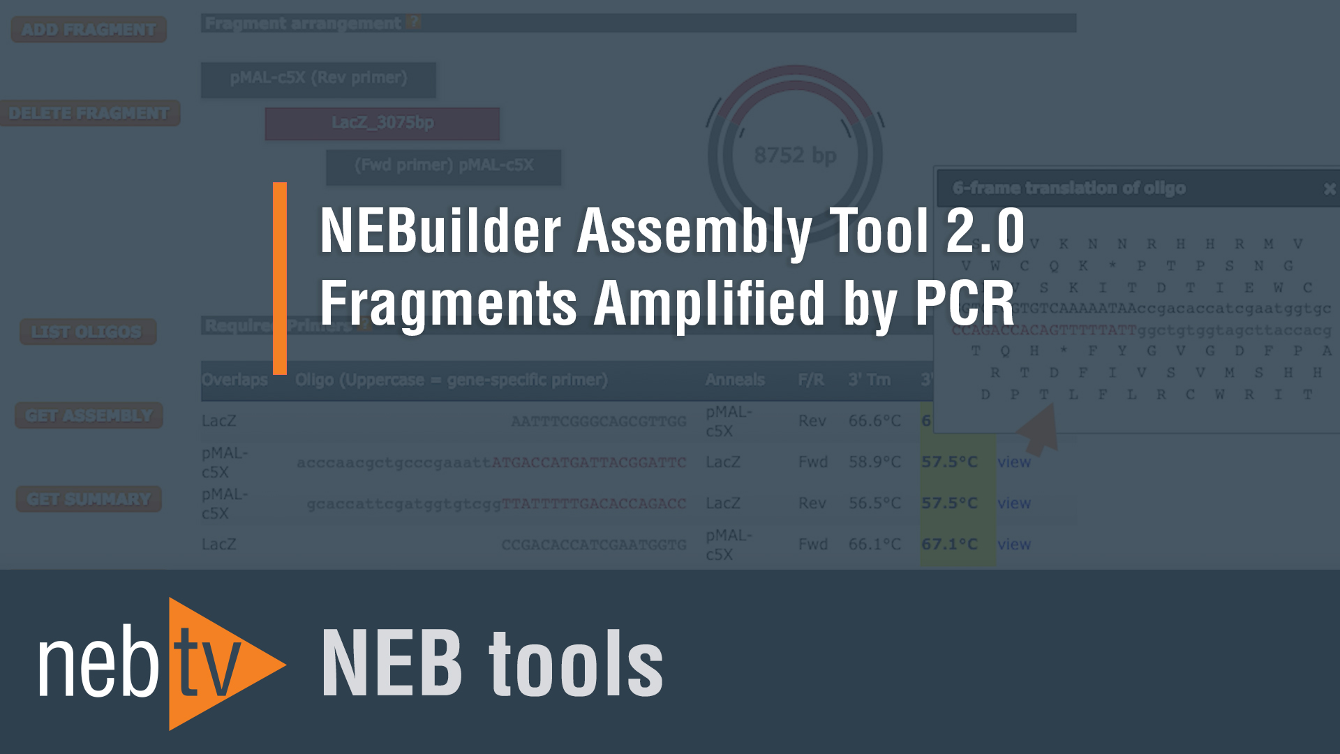NEBTVToolsThumbnailNEBuilderAssemblyTool20Fragments Amplified by PCR