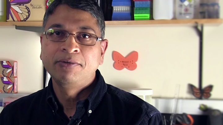 PradhanSriharsa